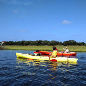 kayak nature tour hatteras ocean island center