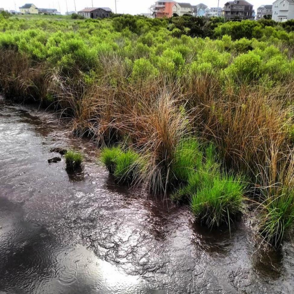 marsh madness hatteras ocean island center